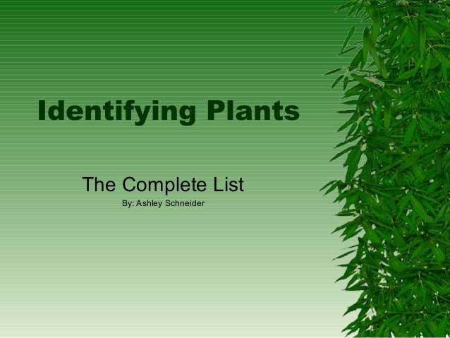 Identifying Plants   The Complete List       By: Ashley Schneider
