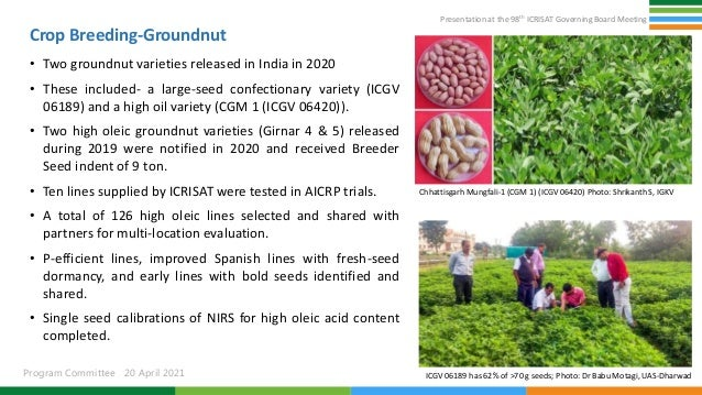 Presentation at the 98th ICRISAT Governing Board Meeting Program Committee 20 April 2021 Crop Breeding-Groundnut • Two gro...