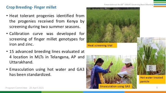 Presentation at the 98th ICRISAT Governing Board Meeting Program Committee 20 April 2021 Crop Breeding- Finger millet • He...
