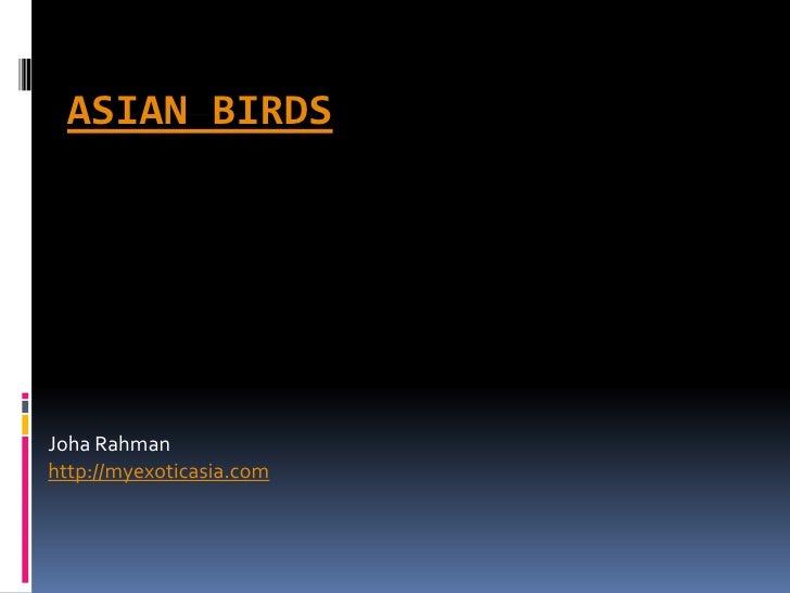 ASIAN BIRDS     Joha Rahman http://myexoticasia.com