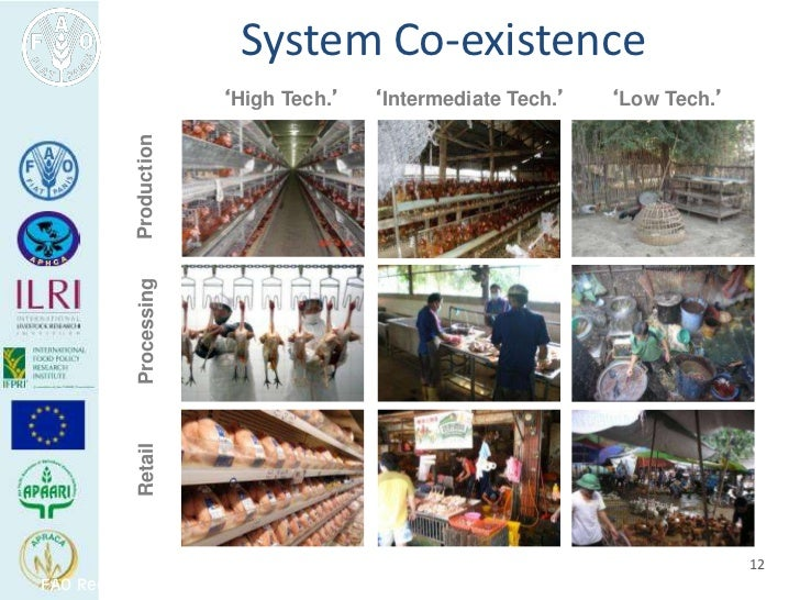 System Co-existence                         'High Tech.'      'Intermediate Tech.'   'Low Tech.'            Production    ...