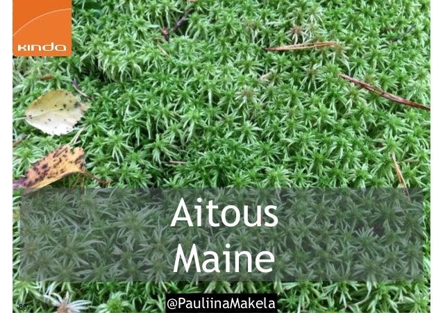 @PauliinaMakela80 Aitous Maine