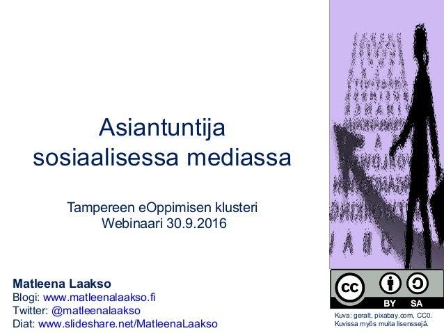 Matleena Laakso Blogi: www.matleenalaakso.fi Twitter: @matleenalaakso Diat: www.slideshare.net/MatleenaLaakso Asiantuntija...
