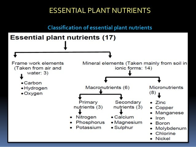 Asif ppt for Soil nutrients