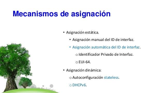 Mecanismos de asignación • Asignación estática. • Asignación manual del ID de interfaz. • Asignación automática del ID de ...