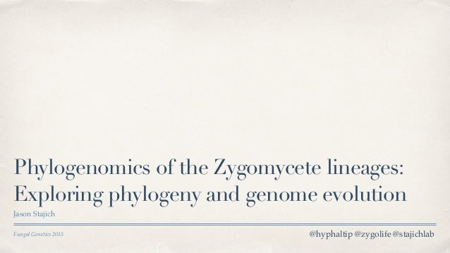 Fungal Genetics 2015 Phylogenomics of the Zygomycete lineages: Exploring phylogeny and genome evolution Jason Stajich @hyp...