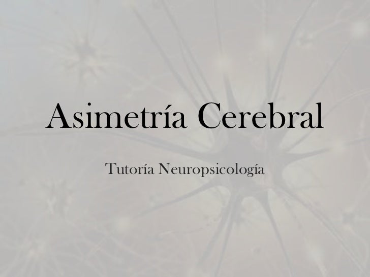 Asimetría Cerebral   Tutoría Neuropsicología