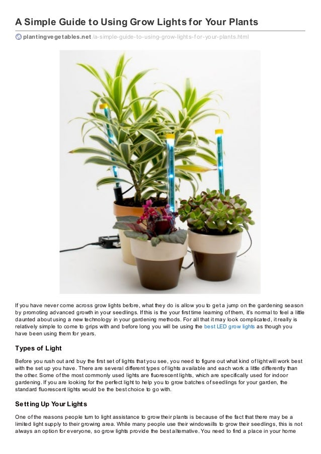 A Simple Guide to Using Grow Lights for Your Plants plantingvegetables.net /a-simple-guide-to-using-grow-lights-f or-your-...