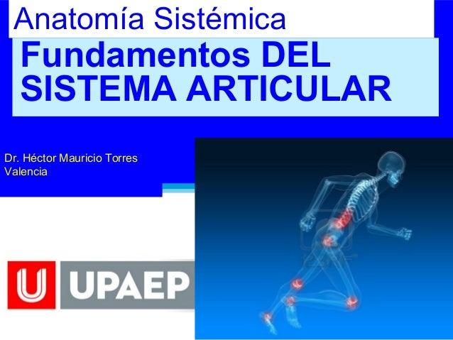 Anatomía Sistémica, Articulaciones, Fundamentos