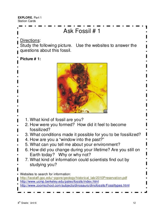 EXPLORE, Part 1Station Cards                               Ask Fossil # 1  Directions:  Study the following picture. Use t...