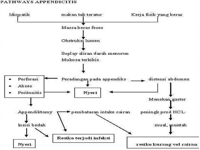 DIARE [Definisi, Klasifikasi, Patofisiologi, Etiologi, Gejala, Diagnosis, Terapi]