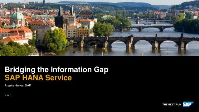 PUBLIC Angela Harvey, SAP Bridging the Information Gap SAP HANA Service