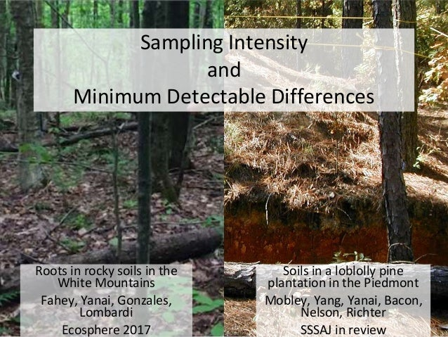 Sampling Intensity and Minimum Detectable Differences Soils in a loblolly pine plantation in the Piedmont Mobley, Yang, Ya...