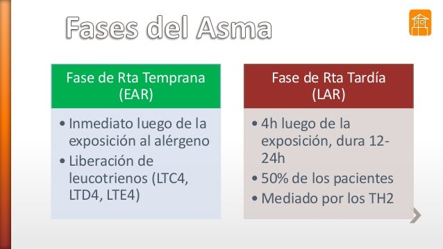 Fase de Rta Temprana (EAR) • Inmediato luego de la exposición al alérgeno • Liberación de leucotrienos (LTC4, LTD4, LTE4) ...