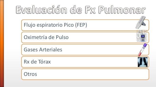 Flujo espiratorio Pico (FEP) Oximetría de Pulso Gases Arteriales Rx de Tórax Otros