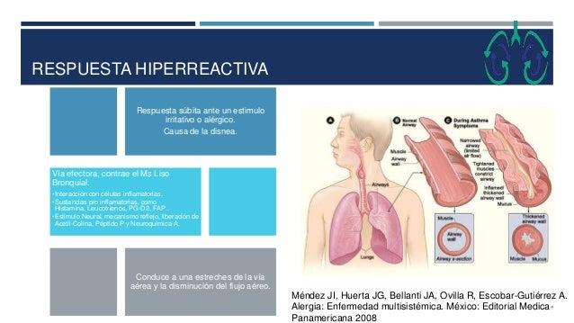 RESPUESTA HIPERREACTIVA Respuesta súbita ante un estimulo irritativo o alérgico. Causa de la disnea. Vía efectora, contrae...