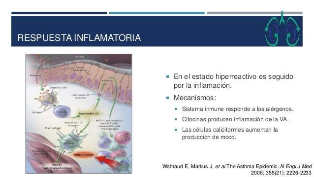 RESPUESTA INFLAMATORIA  En el estado hiperreactivo es seguido por la inflamación.  Mecanismos:  Sistema inmune responde...