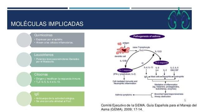 MOLÉCULAS IMPLICADAS Quimiocinas • Expresan por el epitelio. • Atraen a las células inflamatorias. Leucotrienos • Potentes...