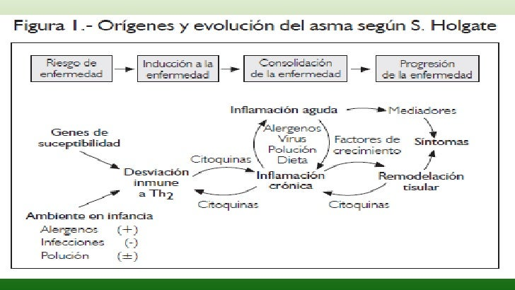 FISIOPATOLOGIA ASMA BRONQUIAL EBOOK DOWNLOAD