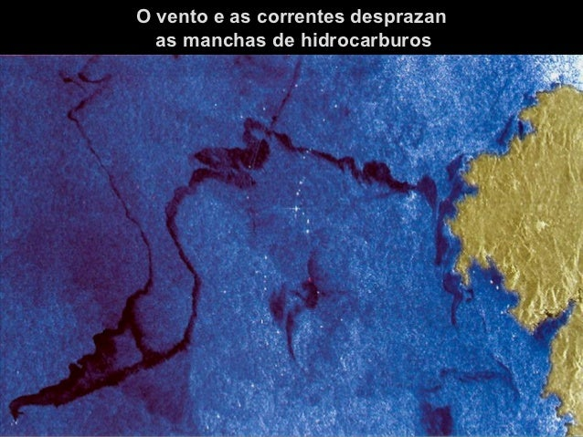 ALTERACIÓN DOSECOSISTEMASE DA PAISAXE
