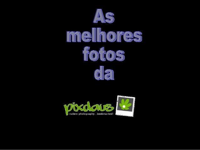 As melhores fotos_da_pixdaus_i