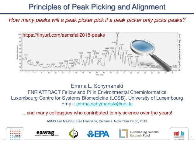 1 Principles of Peak Picking and Alignment Emma L. Schymanski FNR ATTRACT Fellow and PI in Environmental Cheminformatics L...