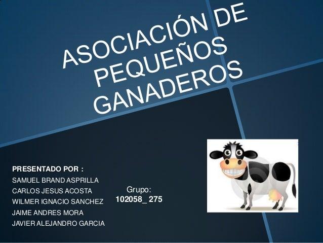 PRESENTADO POR :SAMUEL BRAND ASPRILLACARLOS JESUS ACOSTA         Grupo:WILMER IGNACIO SANCHEZ    102058_ 275JAIME ANDRES M...