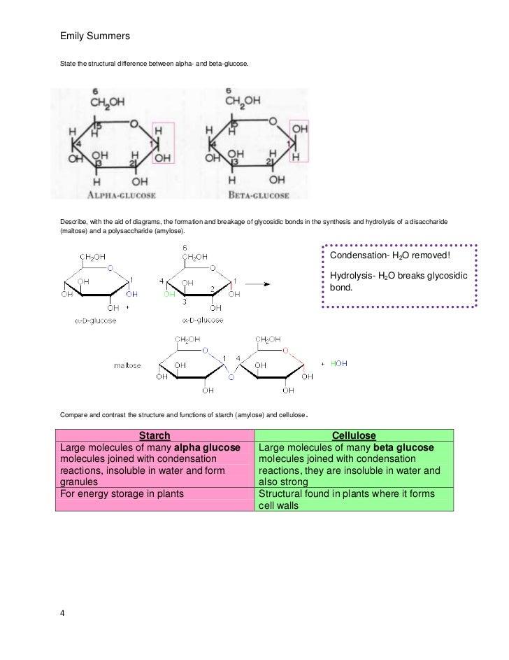 a2 biology ocr coursework