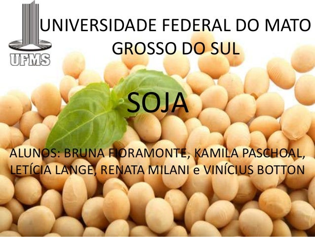 UNIVERSIDADE FEDERAL DO MATO            GROSSO DO SUL                  SOJAALUNOS: BRUNA FIORAMONTE, KAMILA PASCHOAL,LETÍC...