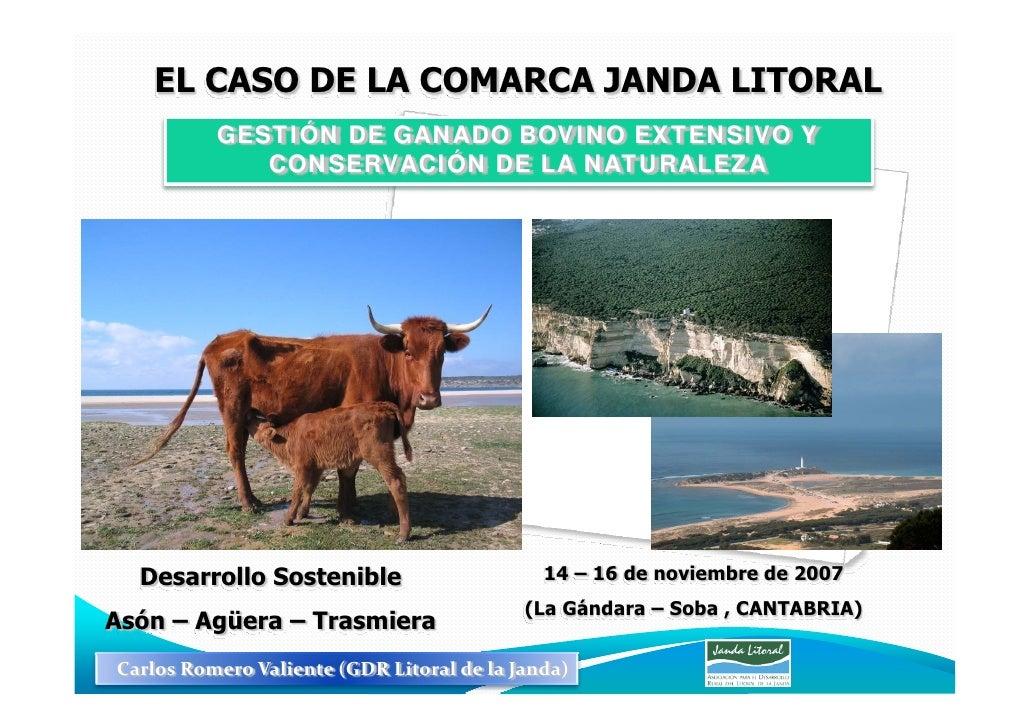 EL CASO DE LA COMARCA JANDA LITORAL           GESTIÓN DE GANADO BOVINO EXTENSIVO Y              CONSERVACIÓN DE LA NATURAL...