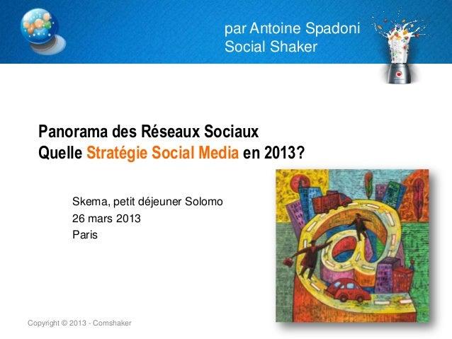 par Antoine Spadoni                                           Social Shaker  Panorama des Réseaux Sociaux  Quelle Stratégi...