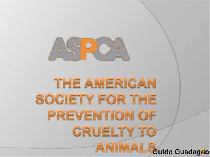 aspca the american society for the prevention of cruelty to animalsguido