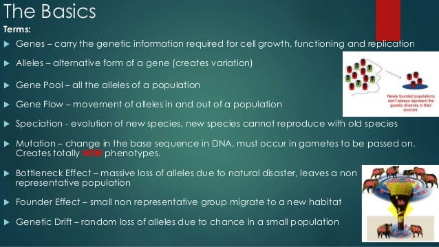 bio notes speciation Aqa gce biology a2 award 2411 unit 4 populations & environment selection & speciation practice exam questions.