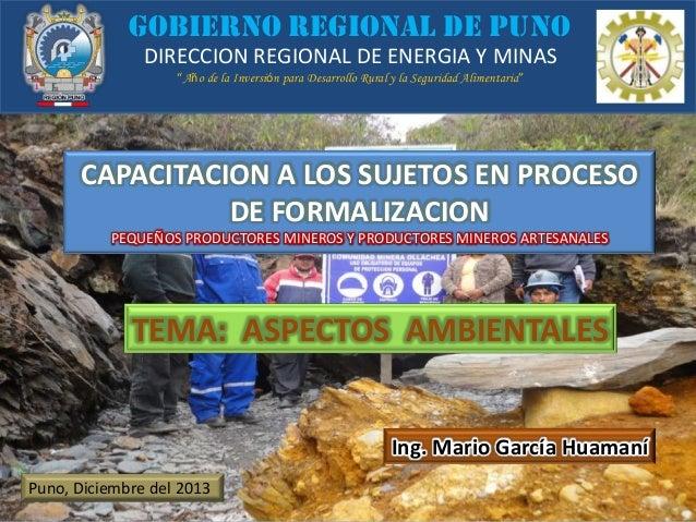 """GOBIERNO REGIONAL DE PUNO DIRECCION REGIONAL DE ENERGIA Y MINAS """"Año de la Inversión para Desarrollo Rural y la Seguridad ..."""