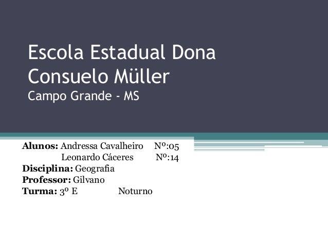 Escola Estadual Dona Consuelo Müller Campo Grande - MS Alunos: Andressa Cavalheiro Nº:05 Leonardo Cáceres Nº:14 Disciplina...