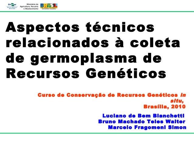 Aspectos técnicosrelacionados à coletade germoplasma deRecursos Genéticos   Curso de Conservação de Recursos Genéticos in ...