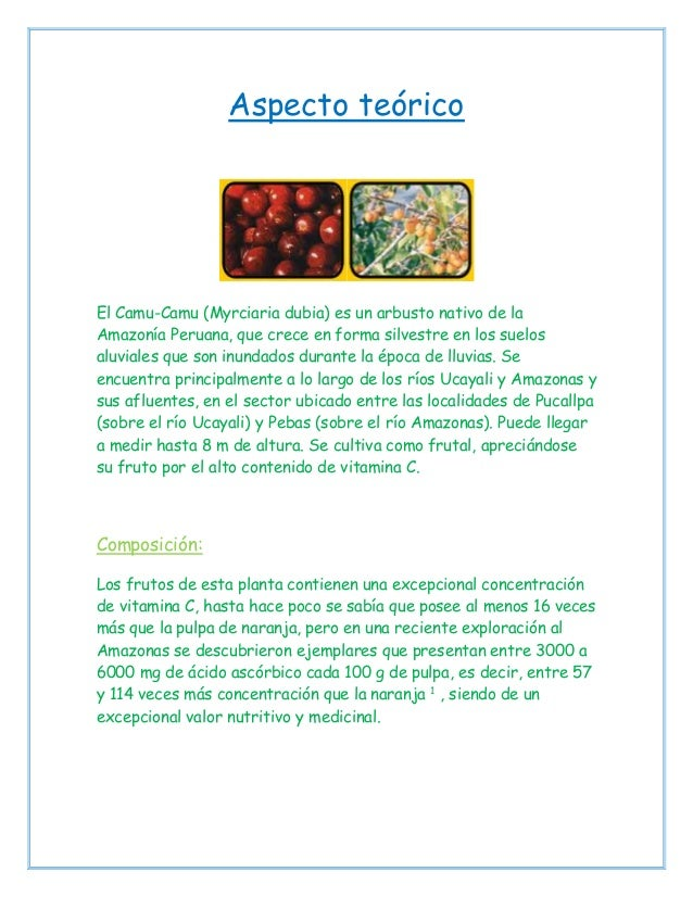 Aspecto teórico El Camu-Camu (Myrciaria dubia) es un arbusto nativo de la Amazonía Peruana, que crece en forma silvestre e...