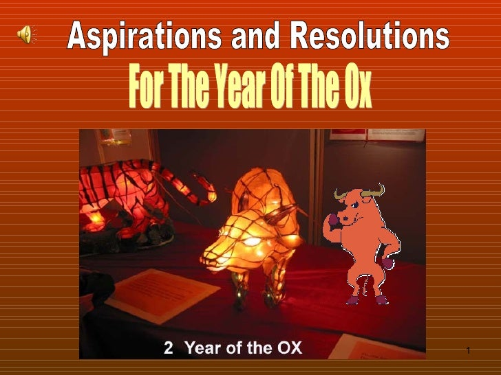 Aspirations and Resolutions For The Year Of The Ox
