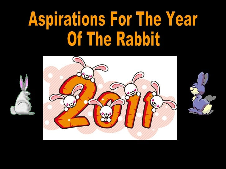 aspirations for the year of the rabbit. Black Bedroom Furniture Sets. Home Design Ideas