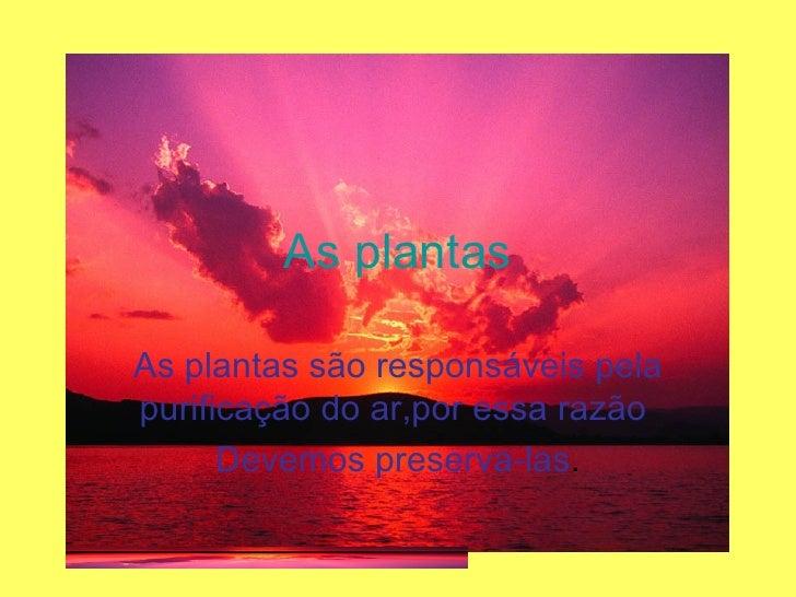 As plantas As plantas são responsáveis pela purificação do ar,por essa razão  Devemos preserva-las .