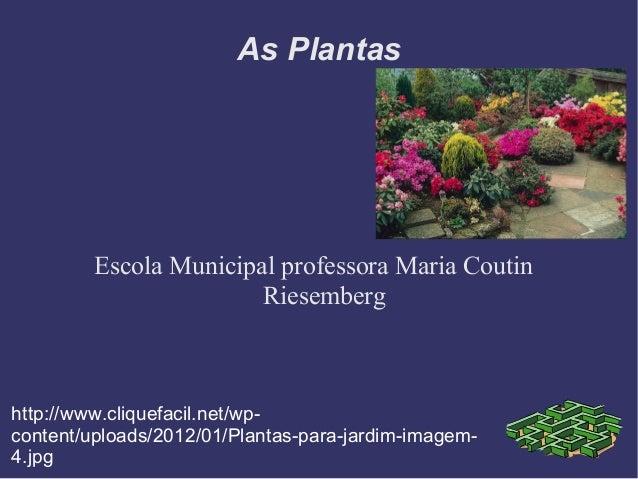 As Plantas         Escola Municipal professora Maria Coutin                        Riesemberghttp://www.cliquefacil.net/wp...