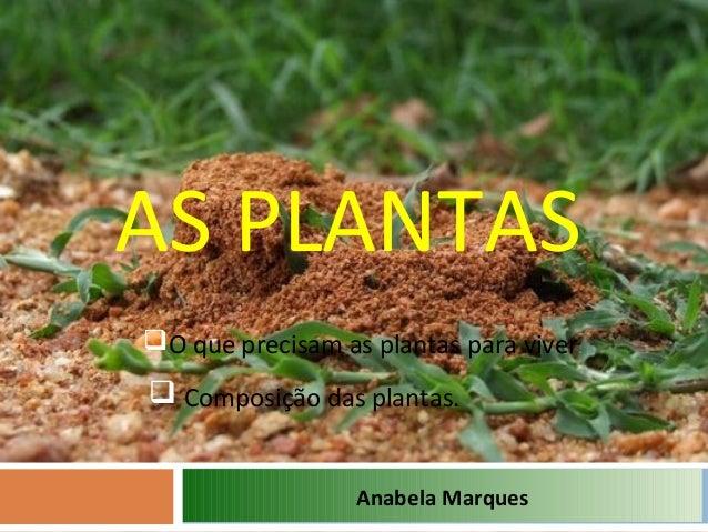 AS PLANTASAnabela MarquesO que precisam as plantas para viver. Composição das plantas.