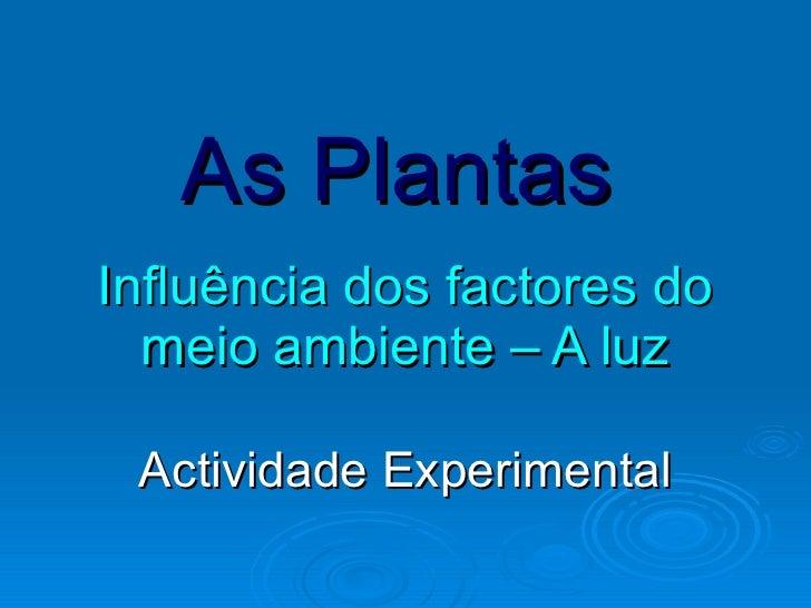 As Plantas   Influência dos factores do meio ambiente – A luz Actividade Experimental