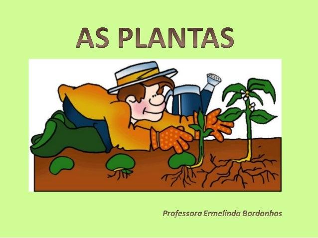 Se observares as plantas que crescem nos canteiros do       Se observares as plantas que crescem nos canteiros do      jar...