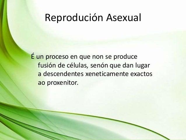 Reprodución Asexual É un proceso en que non se produce fusión de células, senón que dan lugar a descendentes xeneticamente...