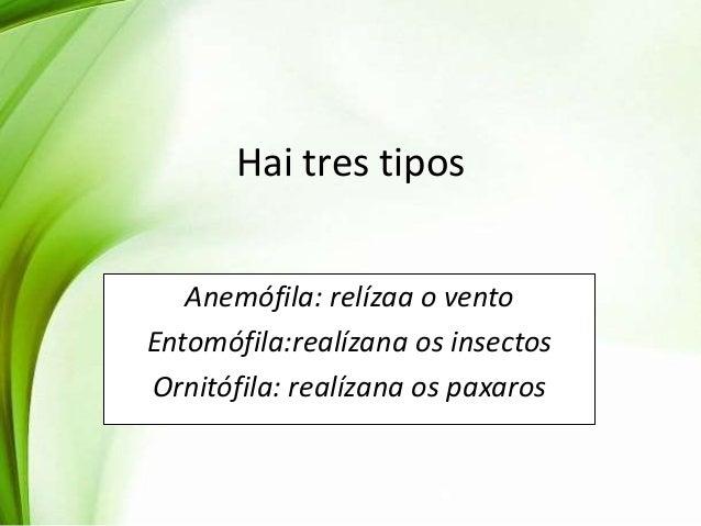 Hai tres tipos Anemófila: relízaa o vento Entomófila:realízana os insectos Ornitófila: realízana os paxaros
