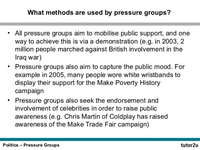 Promotional pressure groups