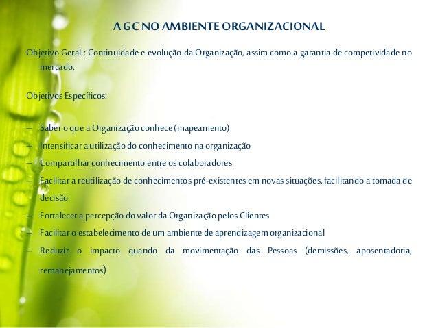 AGCNO AMBIENTEORGANIZACIONAL Objetivo Geral : Continuidade e evolução da Organização, assim como a garantia de competivida...