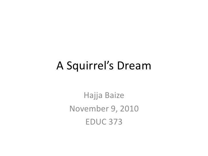 A Squirrel's Dream<br />Hajja Baize<br />November 9, 2010<br />EDUC 373<br />