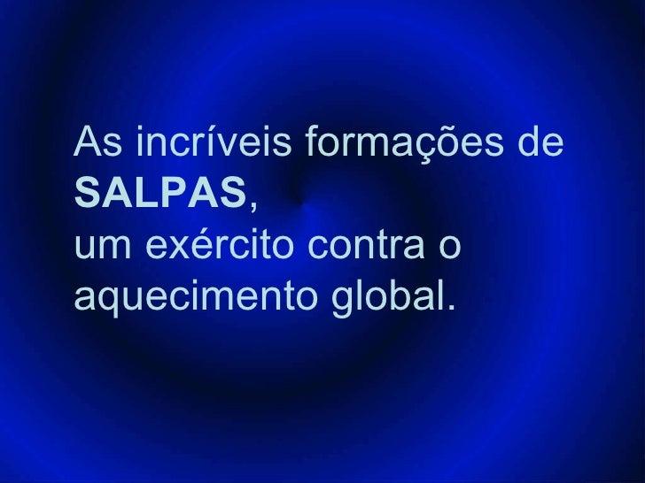 As incríveis formações de  SALPAS , um exército contra o aquecimento global.